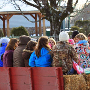 Hayrides in Downtown Blowing Rock